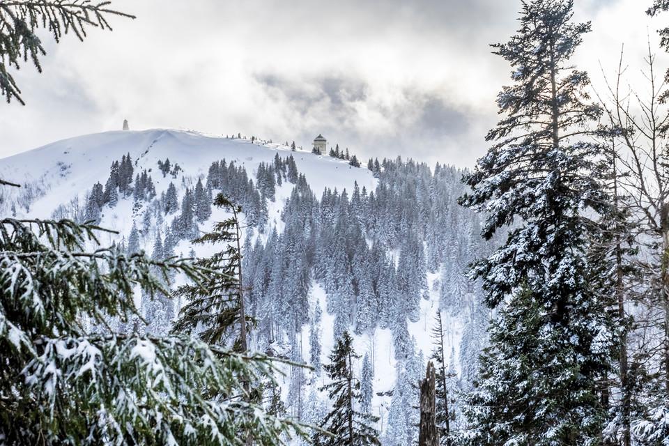 Als wir gemeinsam mit Heinz losstapfen, ist die Sicht perfekt. Die Bäume im Winterwald sind weiß bepudert.