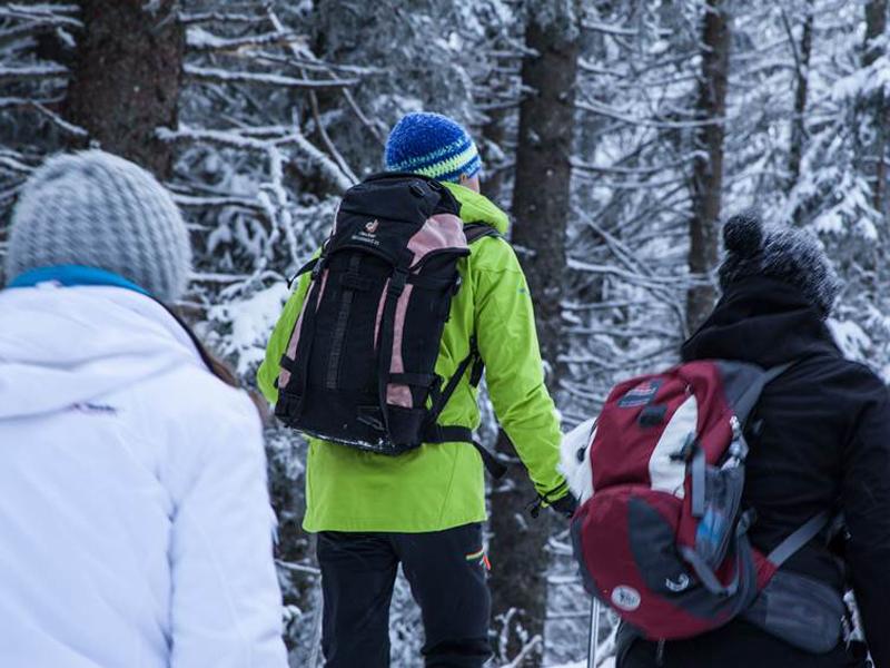 Gespannt lauschen alle den Geschichten des Bergführers.