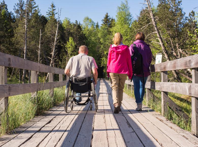 Spaziergang im Hochmoor in Hinterzarten bei schönem Sommerwetter