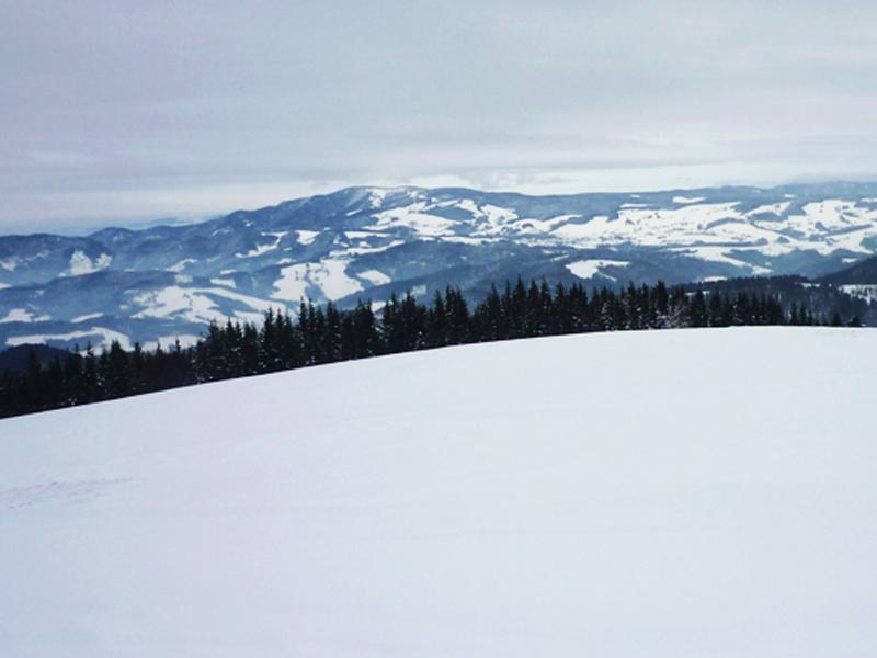 Der vierte und letzte Gipfel, der Immisberg.