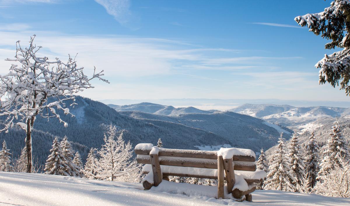 Winterspaziergänge sind für viele Menschen die schönste Nebensache der Welt.