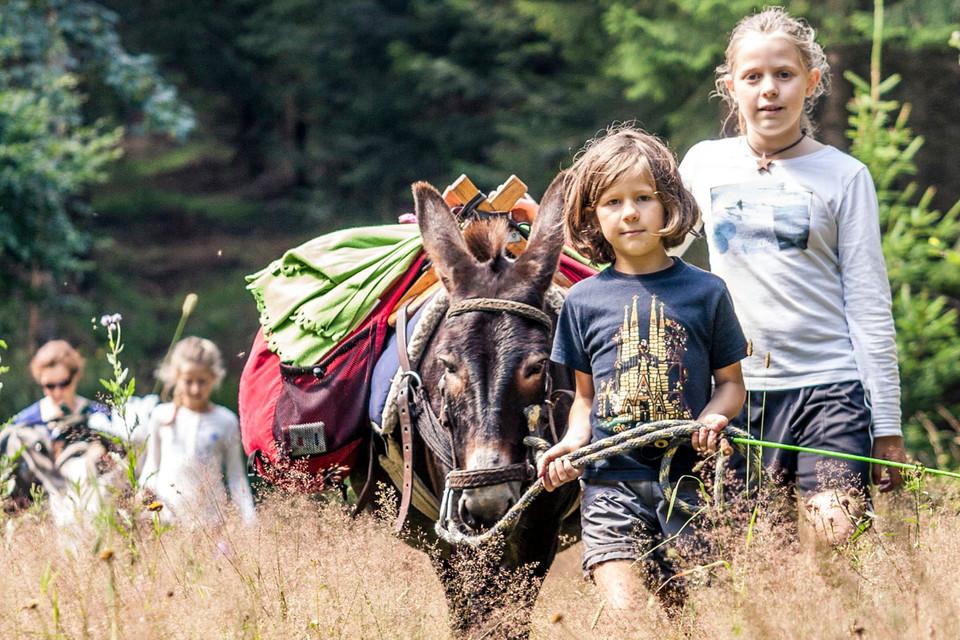 Die Kinder genießen die kurzen Ritte, doch meist führen sie die Esel abwechselnd am Strick.