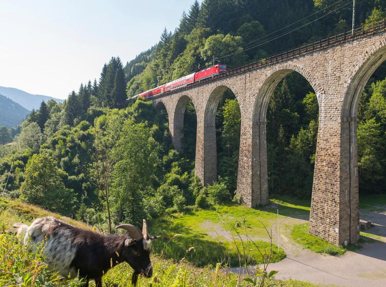 Hoellentalbahn-Hoellsteig-Ravennaviadukt-mit-Zug-und-Ziege