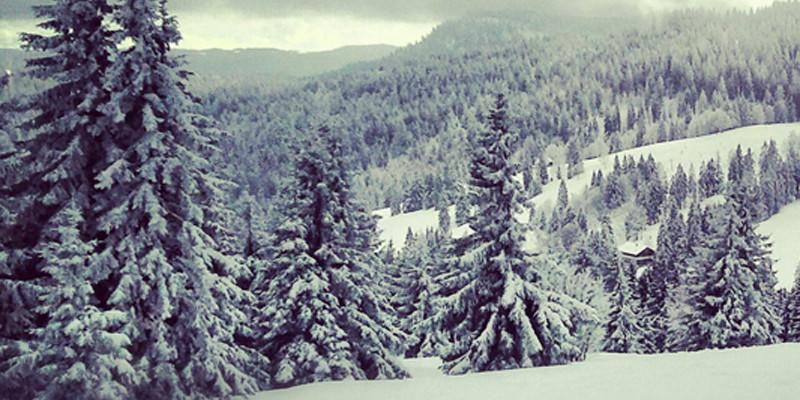 Der ganze Hochschwarzwald glitzert in weißer Schneepracht.