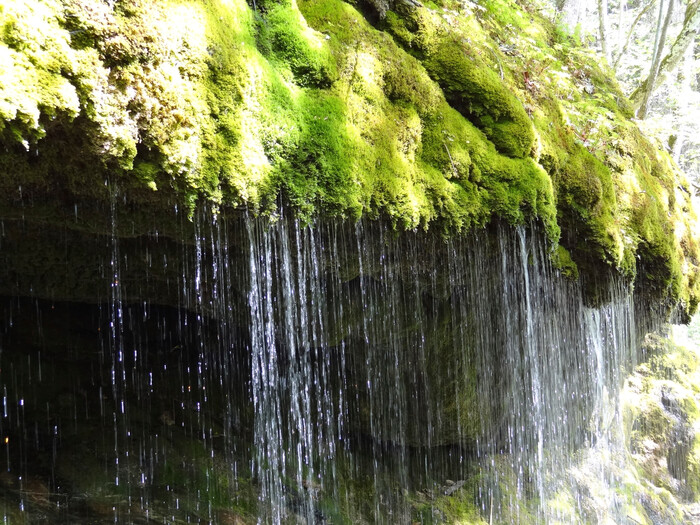 Wasserfall Wutachschlucht