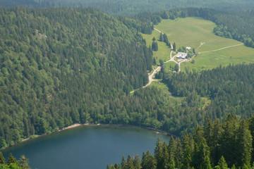 Kombination von Hochschwarzwälder Natur und Hüttenkultur