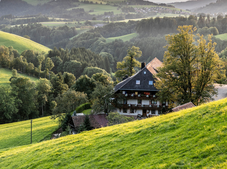 Kapfenhof in St. Peter umringt von grünen Wiesen