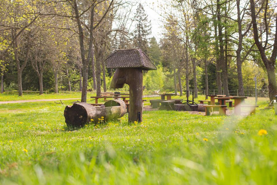 Der Grillplatz Schlüchtsee kombiniert gleich ein dreifaches Sommerglück.