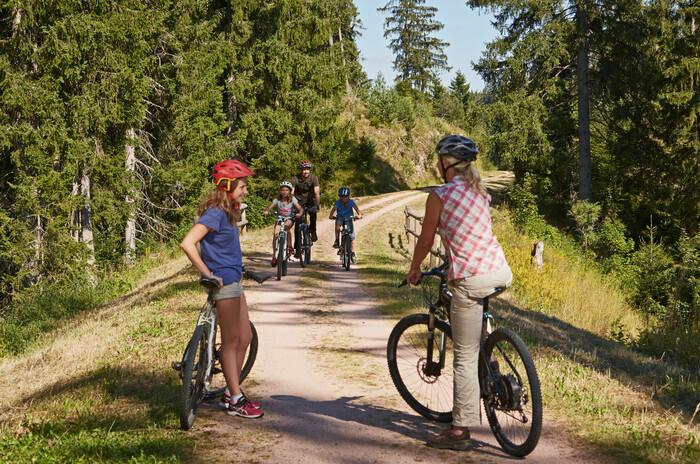 Familie bei einer Fahrradtour auf dem Bähnleradweg