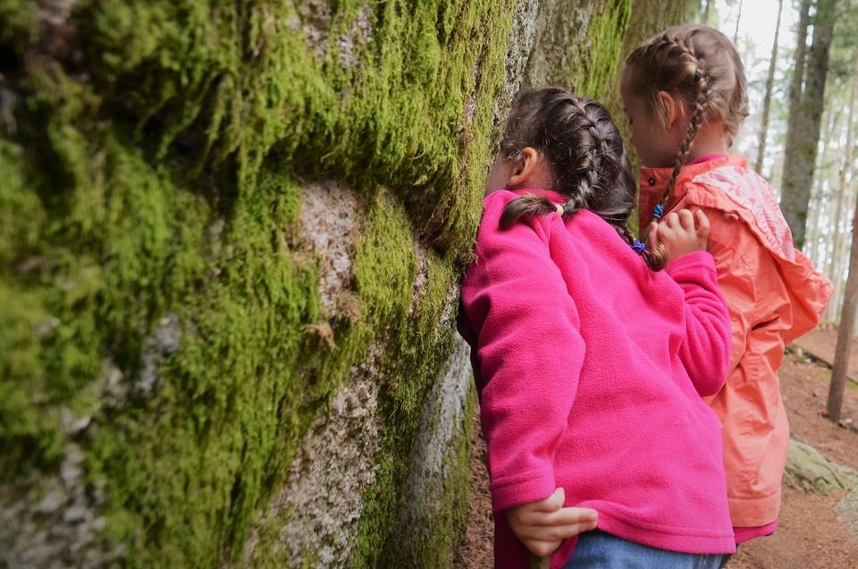 Familientag im Hochschwarzwald Naturerlebnispfad
