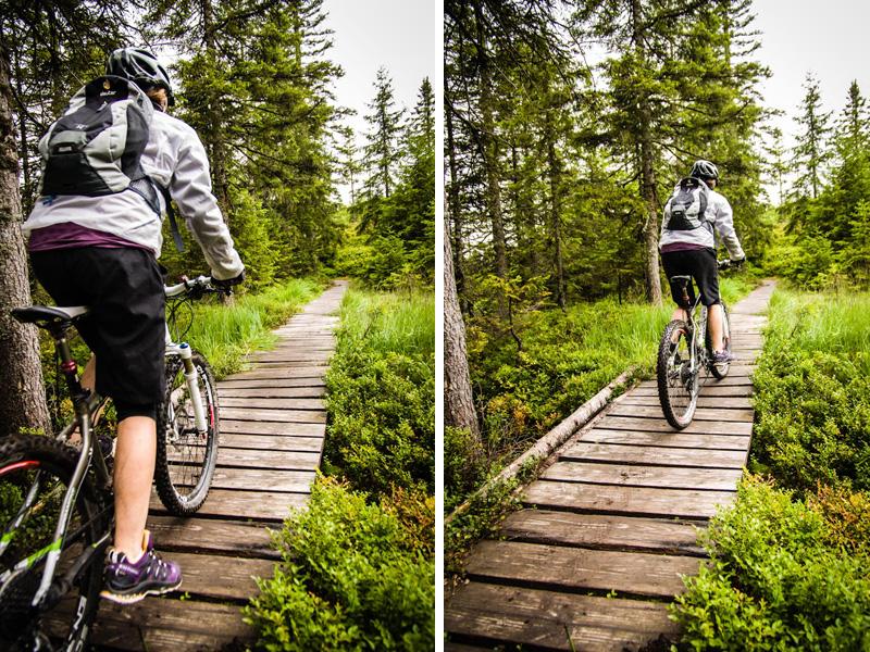 Über Holzbrücken, Steine und Wurzeln geht es nun endlich bergab.