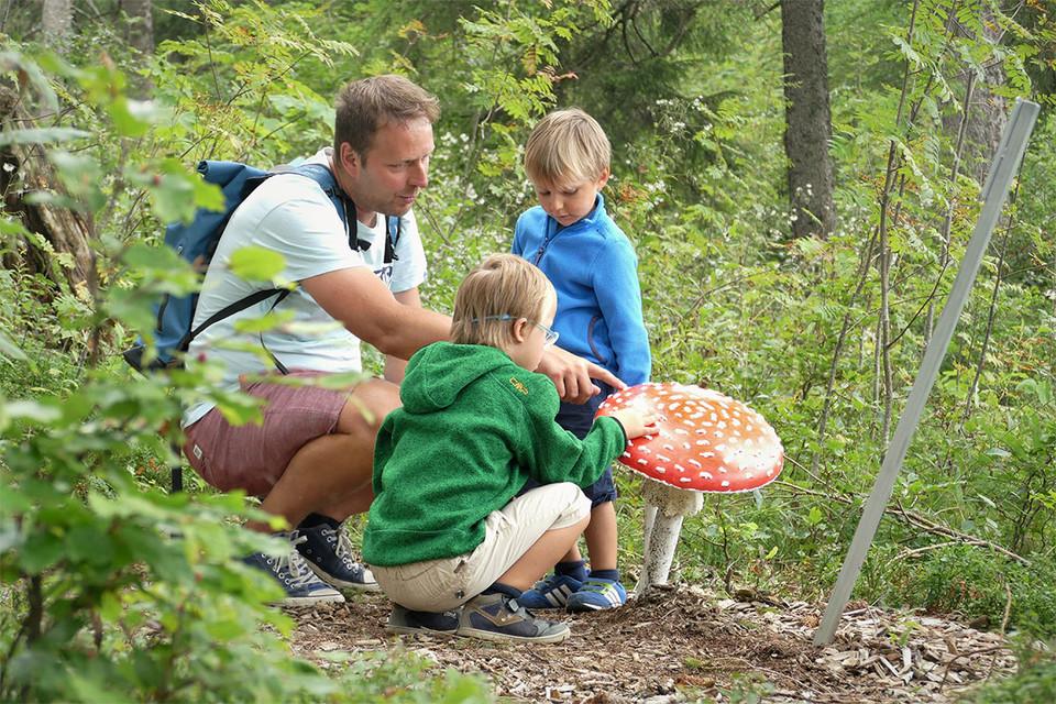 Hier lernen Groß und Klein alles über Pilze.