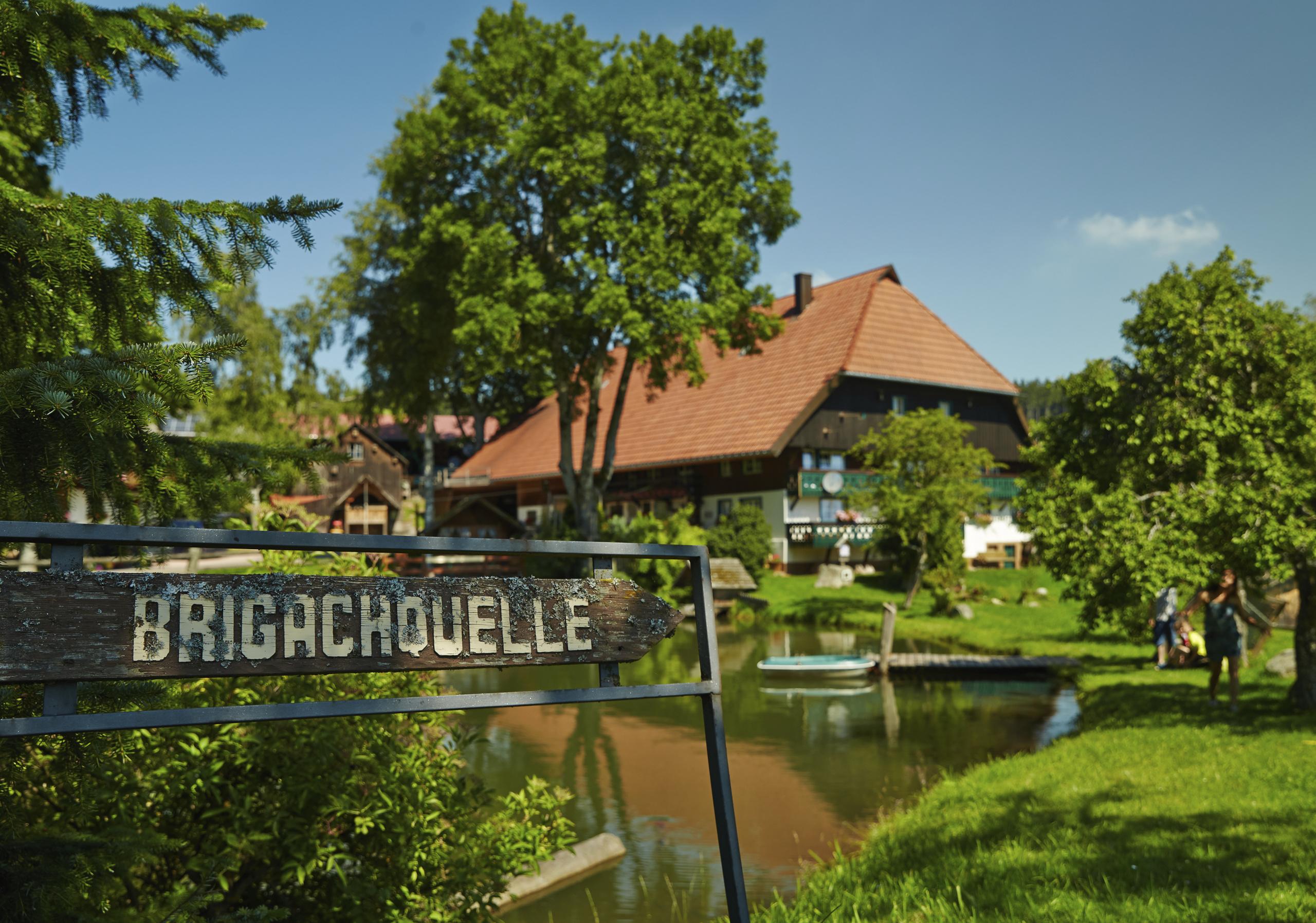 Brigachquelle in St. Georgen