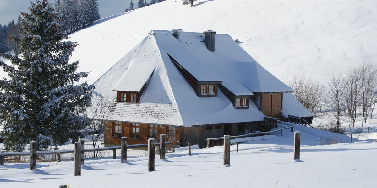 Die Hütte ist eine Almgaststätte auf 1120 Metern Höhe östlich unterhalb des Hinterwaldkopfs (1198 m).