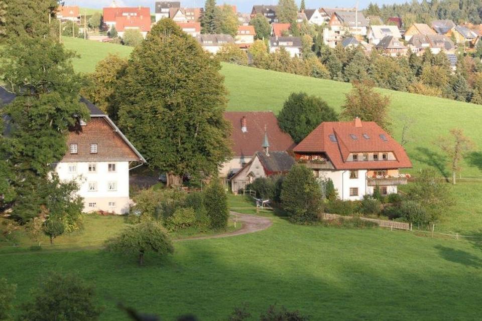 Jetzt besucht Patrik Faller regelmäßig mit Schülern, die er in Freiburg unterrichtet, den elterlichen Hof, den Bruder Philipp übernommen hat.