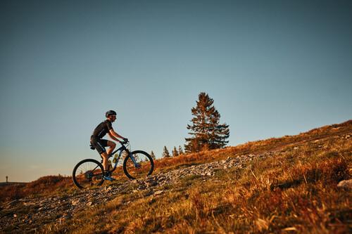 Simon Stiebjahn Mountainbiker