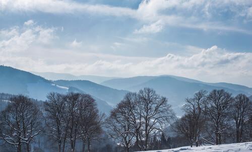 Winterlandschaft in Menzenschwand