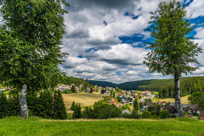 Eisenbach Blick zum Herrenberg