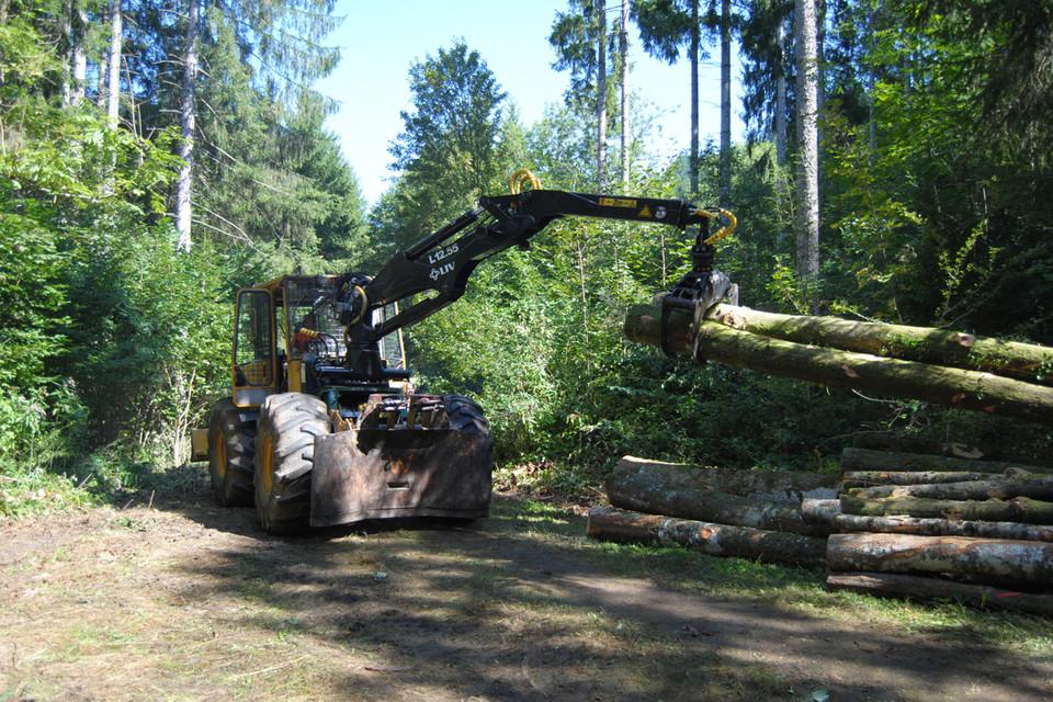 Schwere Maschinen erleichtern Privatwaldbesitzern die Arbeit