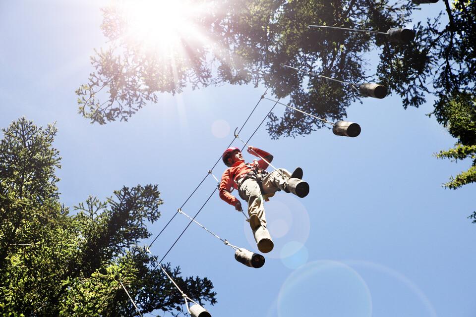Mann beim Klettern in den Baumwipfeln