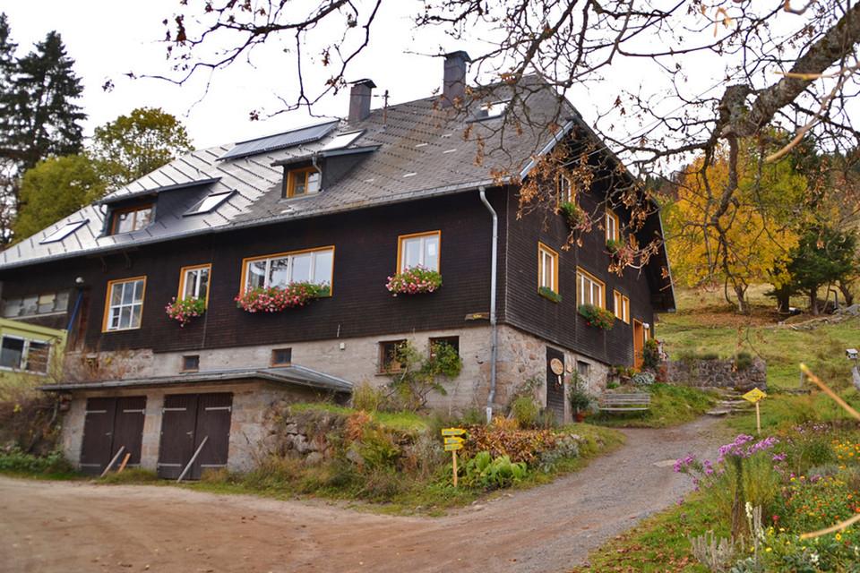 Einen fertigen Hof übernehmen konnten die Tills nicht, wohl aber ein altes Waldarbeiterhaus, in dem die ehemaligen Bewohner auch ein paar Tiere halten konnten.