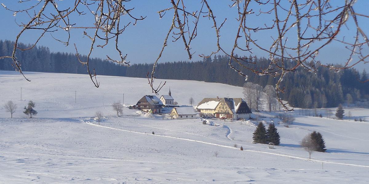 Der Ebenemooshof ist seit fast 500 Jahren in Besitz der Familie Tritschler.