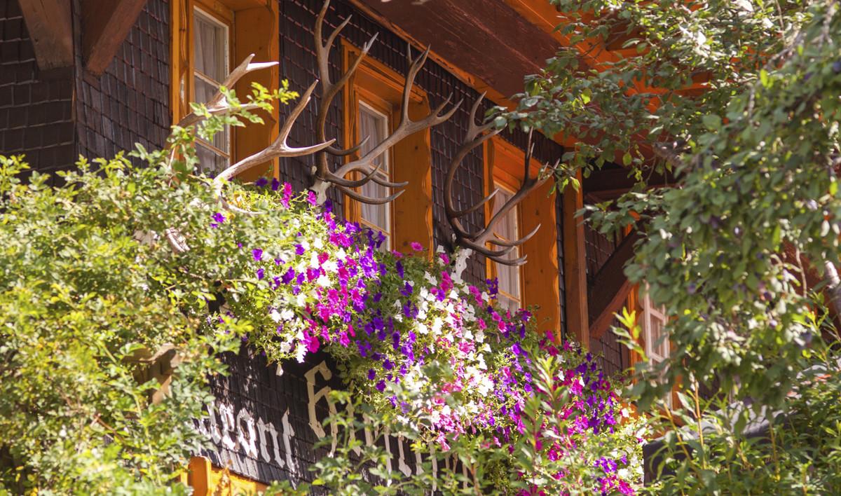 Hotel Hirschen in Menzenschwand