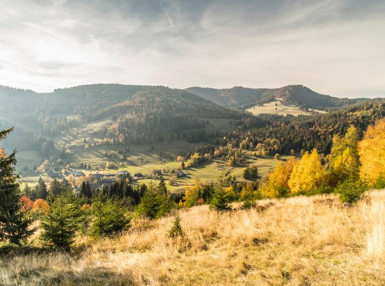 Blick auf Menzenschwand im Herbst
