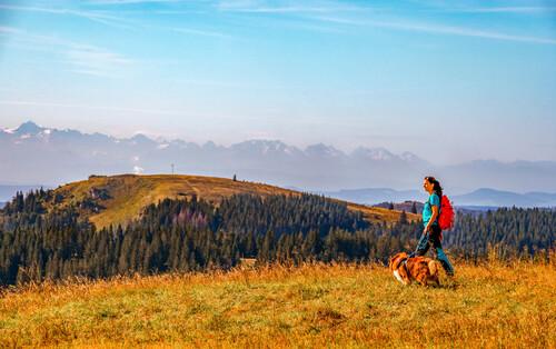 Wanderin mit atemberaubendem Panorama vom Feldberg
