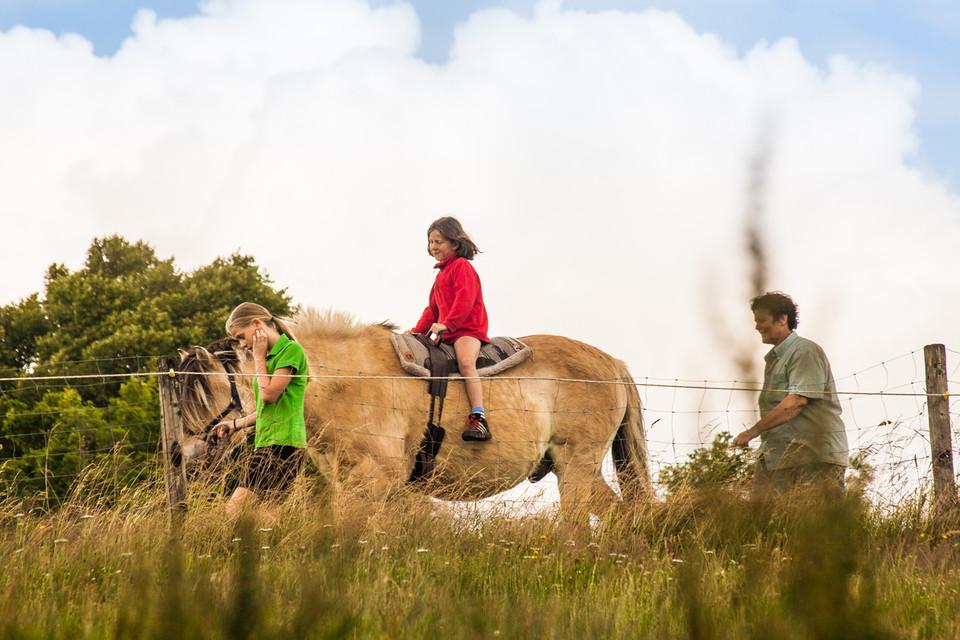 Ponyreiten rund um das Hofgut Dürrenbühl sorgt für Begeisterung.