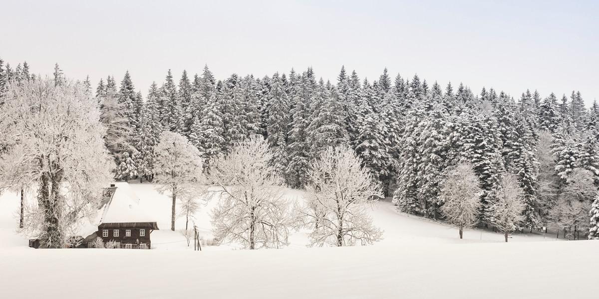 Das Gasthaus Engel Hochberg liegt in ruhiger und naturbelassener Landschaft.