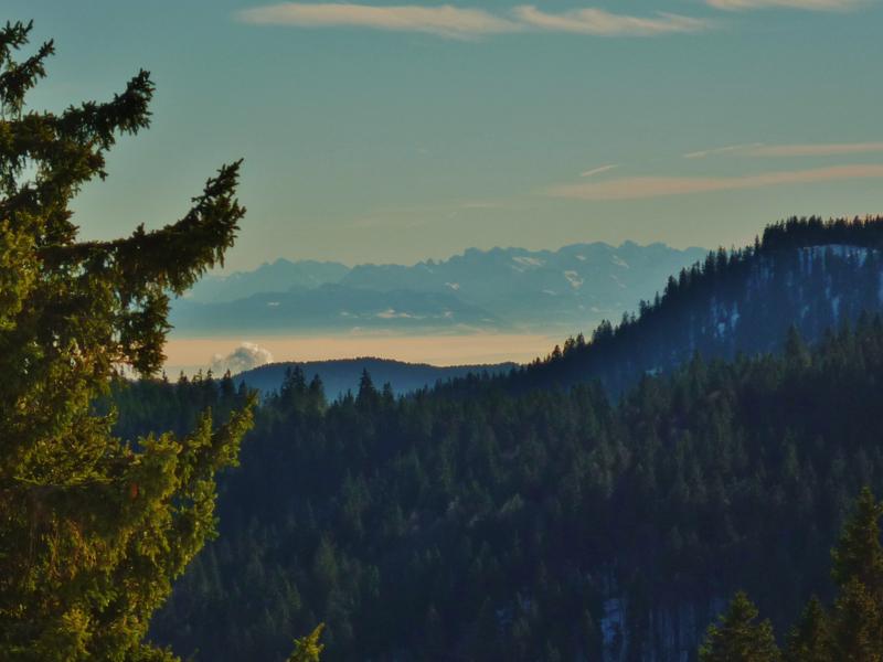 Und was für Aussichten man heute hat – im Hintergrund sind sogar die Alpen zu sehen!