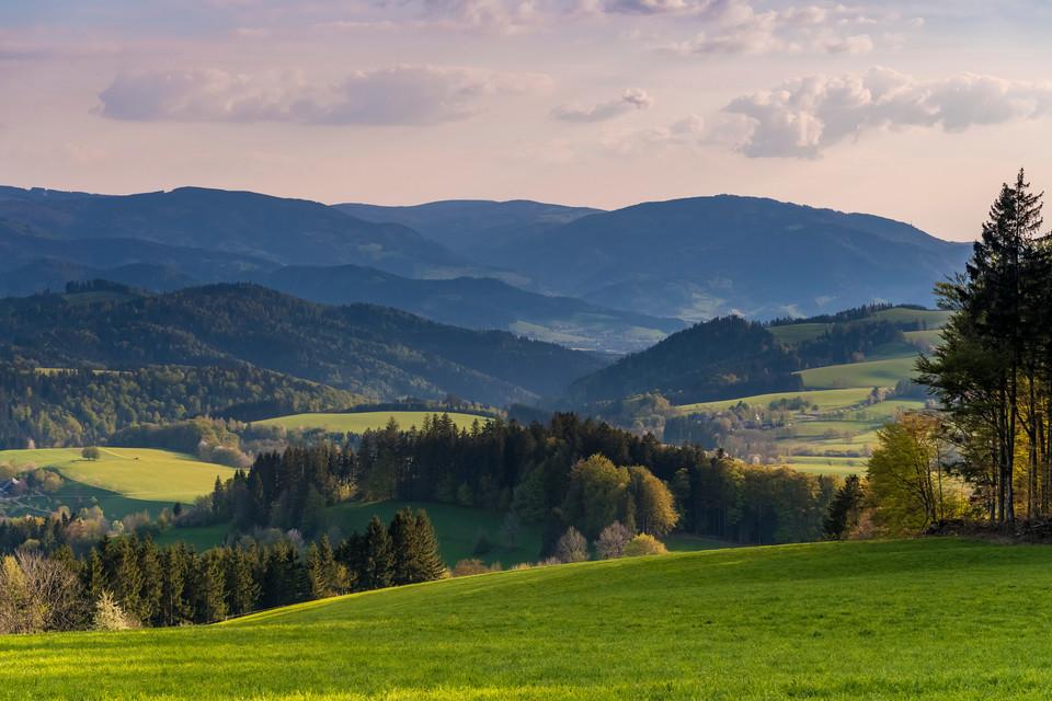 Hochschwarzwälder Sonnenplätze Landschaft bei St. Peter Blick vom Kapfenberg