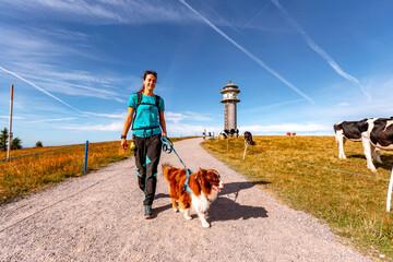 Ausflugstipps mit Hund