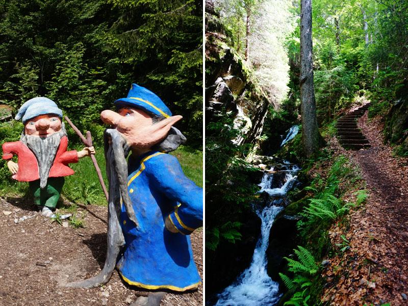 Der Wichtelpfad ist ein, mit Liebe zum Detail, angelegter Kinderpfad, der viele Informationen zum Wald und zum Auerhuhn gibt.