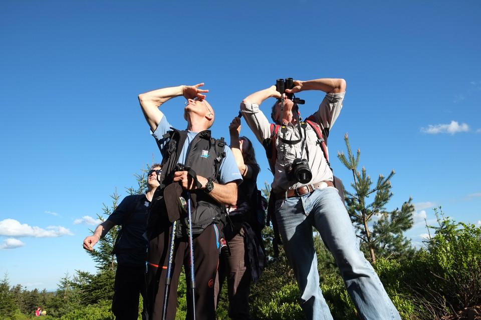 Mit Birding ist nicht etwa eine neue Trendsportart gemeint, sondern die englische Bezeichnung für Vogelbeobachtung.