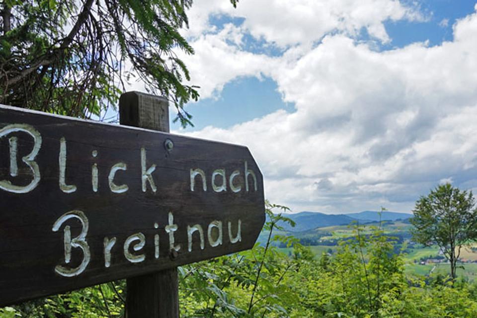 Vom Thurner gehe ich auf dem Westweg Richtung Breitnau, über die Weißtannenhöhe bis zur Fürsatzhöhe.