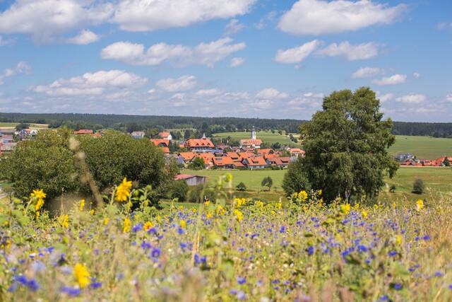 Blick auf Grafenhausen