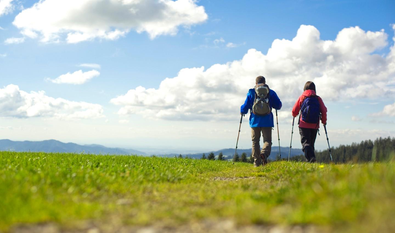 Wanderer auf einem Höhenklimaweg