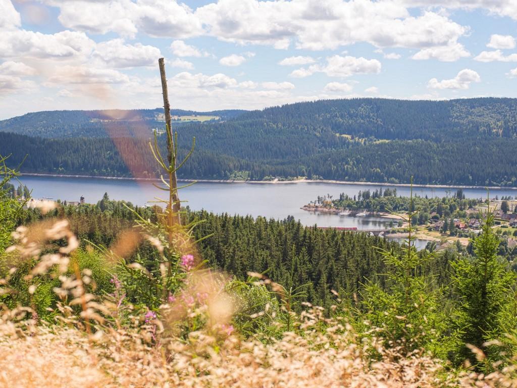 Blick auf den Schluchsee vom Riesenbühlturm