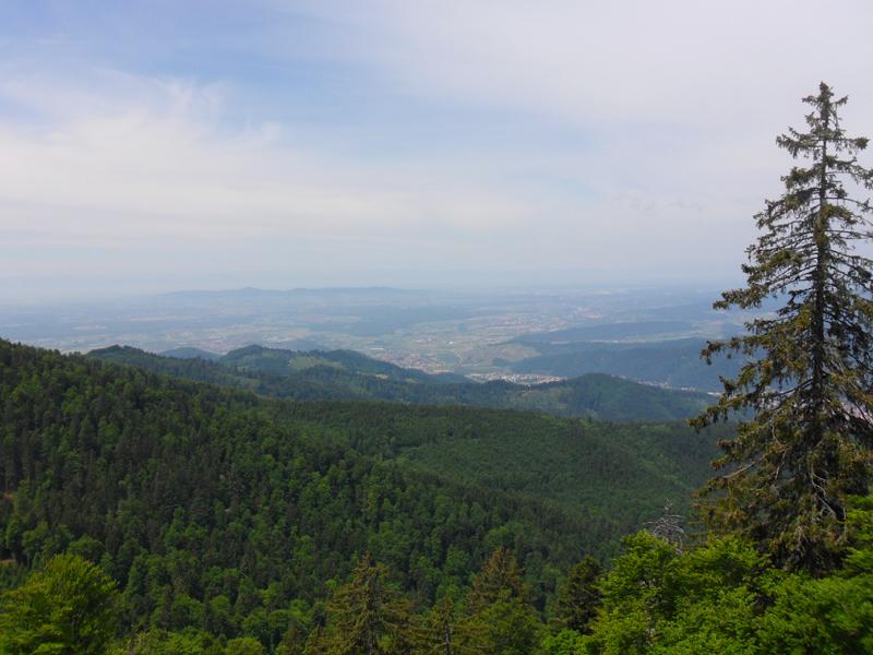 Ein herrlichen Ausblick ins tiefer gelegene Rheintal und die anschließenden Vogesen.