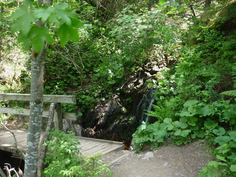 Über eine Holzbrücke passieren wir erst einen kleinen romantischen Wasserfall.