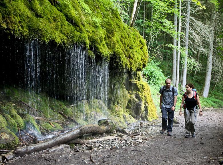 Einer der reichsten Naturräume Deutschlands: Die Wutachschlucht