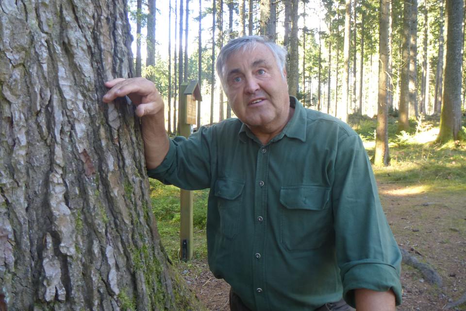 Der ehemalige Förster Hartmut Frank, der auch die Tafel mit den Daten zur Danieltanne aufgestellt hat, ist im Ruhestand noch regelmäßig in grüner Kluft im Wald unterwegs.