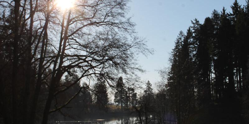 """Der Naturpfad, der bereits 2005 als Folge des Sturms """"Lothar"""" erbaut wurde."""