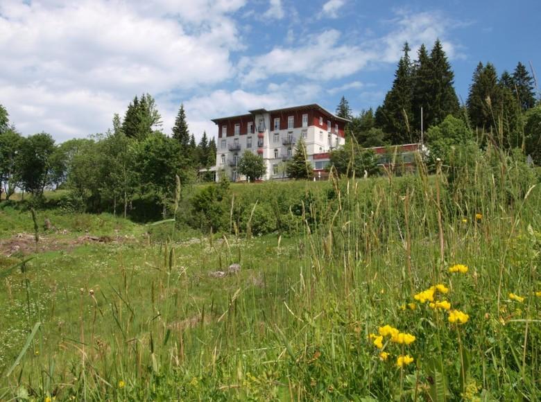 Waldhotel am Notschreipass in Todtnau
