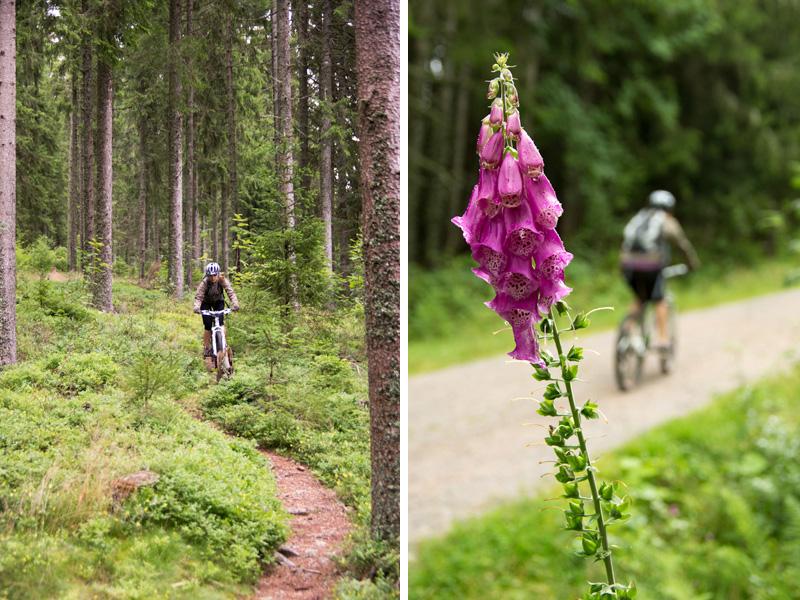 Verena ist durch und durch Schwarzwälderin. Sie ist Studentin an der Dualen Hochschule in Lörrach und hat schon verschiedene Abteilungen der Hochschwarzwald Tourismus GmbH durchlaufen. Ob im Winter mit den Ski den Berg hinab sausen, oder im Sommer mit ihrem Mountainbike – Verena liebt die Herausforderung! Auf ihrem Mountainbike fühlt sie sich schon fast wie Zuhause. Die Wälder im Hochschwarzwald sind ihr Revier und sie kennt sich dort aus wie in ihrer eigenen Westentasche.