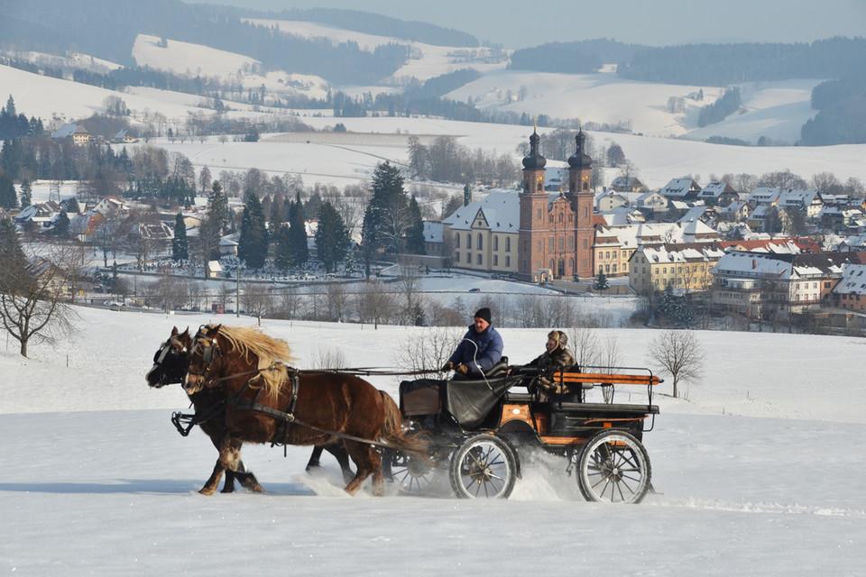 Tief eingemummelt kann man sich in St. Peter von Schwarzwälder Füchsen durch die bezaubernde Schneelandschaft ziehen lassen.