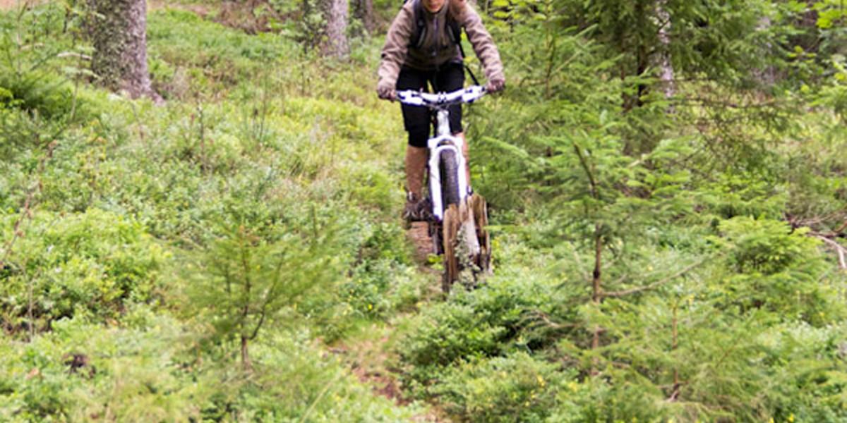 Der Wettergott meint es nicht so gut mit unserer Mountainbike-Tour.