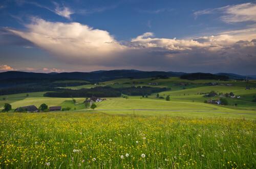 Aussicht bei Breitnau